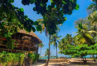 Встречай Новый Год на пляжах Занзибара! Последние Места! Спешите бронировать!
